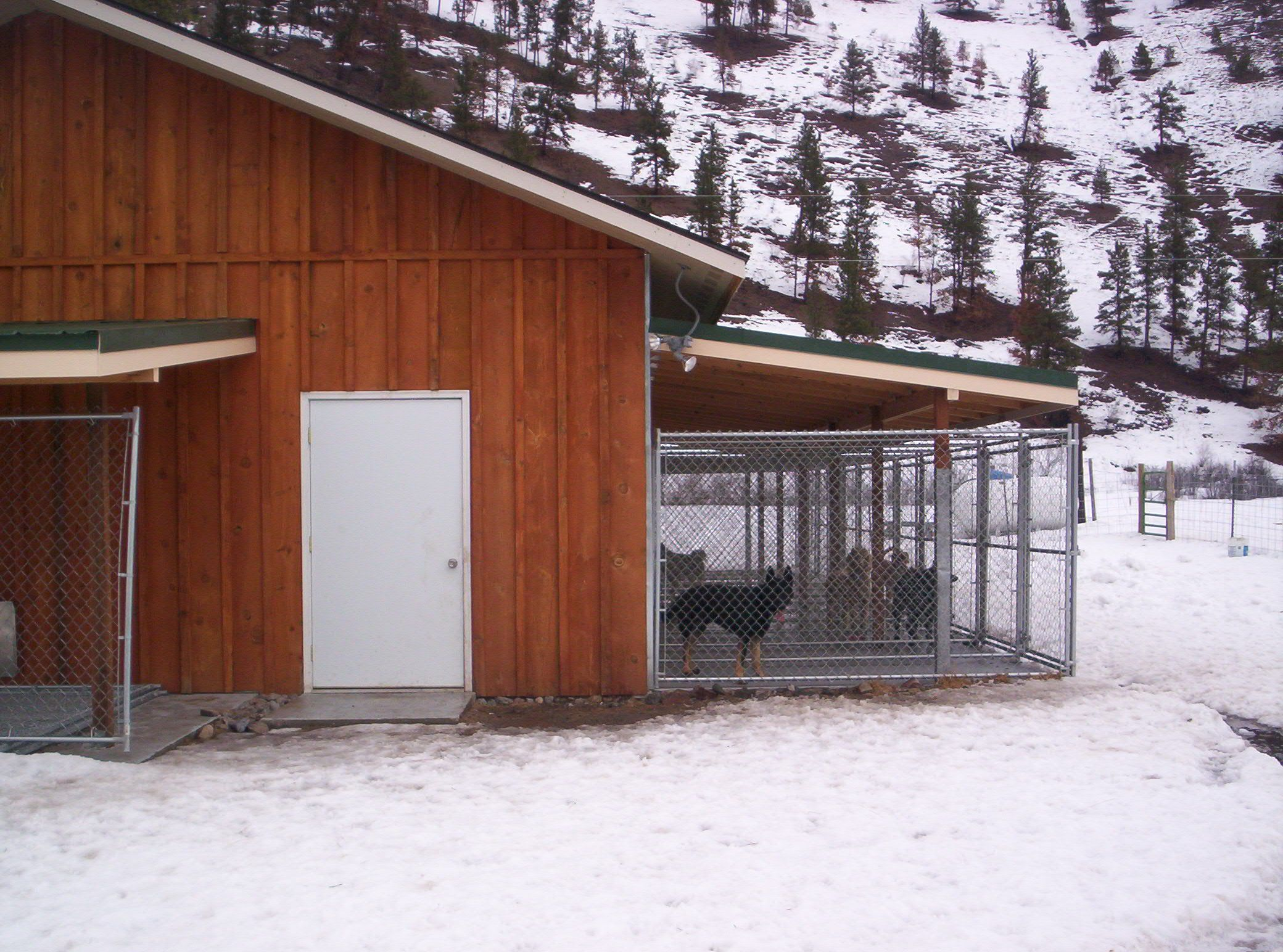 Dog kennel to build kennel building design http www for Indoor outdoor dog kennel design