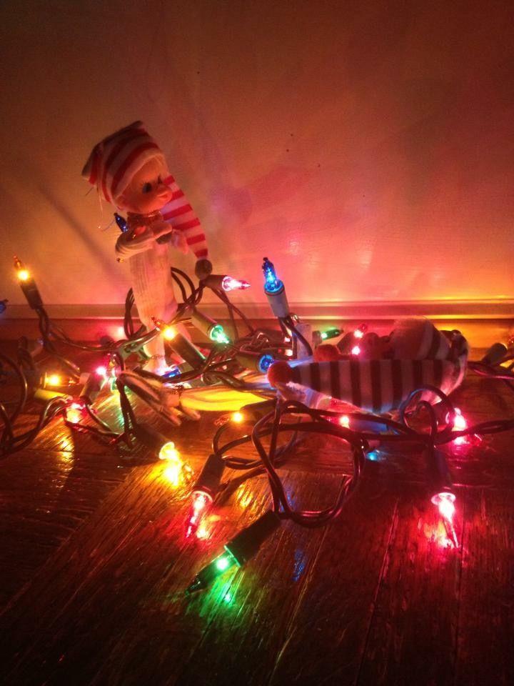 Elfs tangled in lights