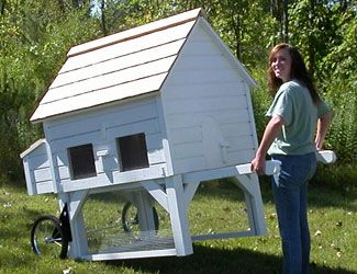 various small coops the green chicken coop chicken. Black Bedroom Furniture Sets. Home Design Ideas