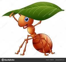 Resultado De Imagen Para Dibujo De Hormiga Imagenes Infantiles De Animales Dibujos De Animales Dibujos
