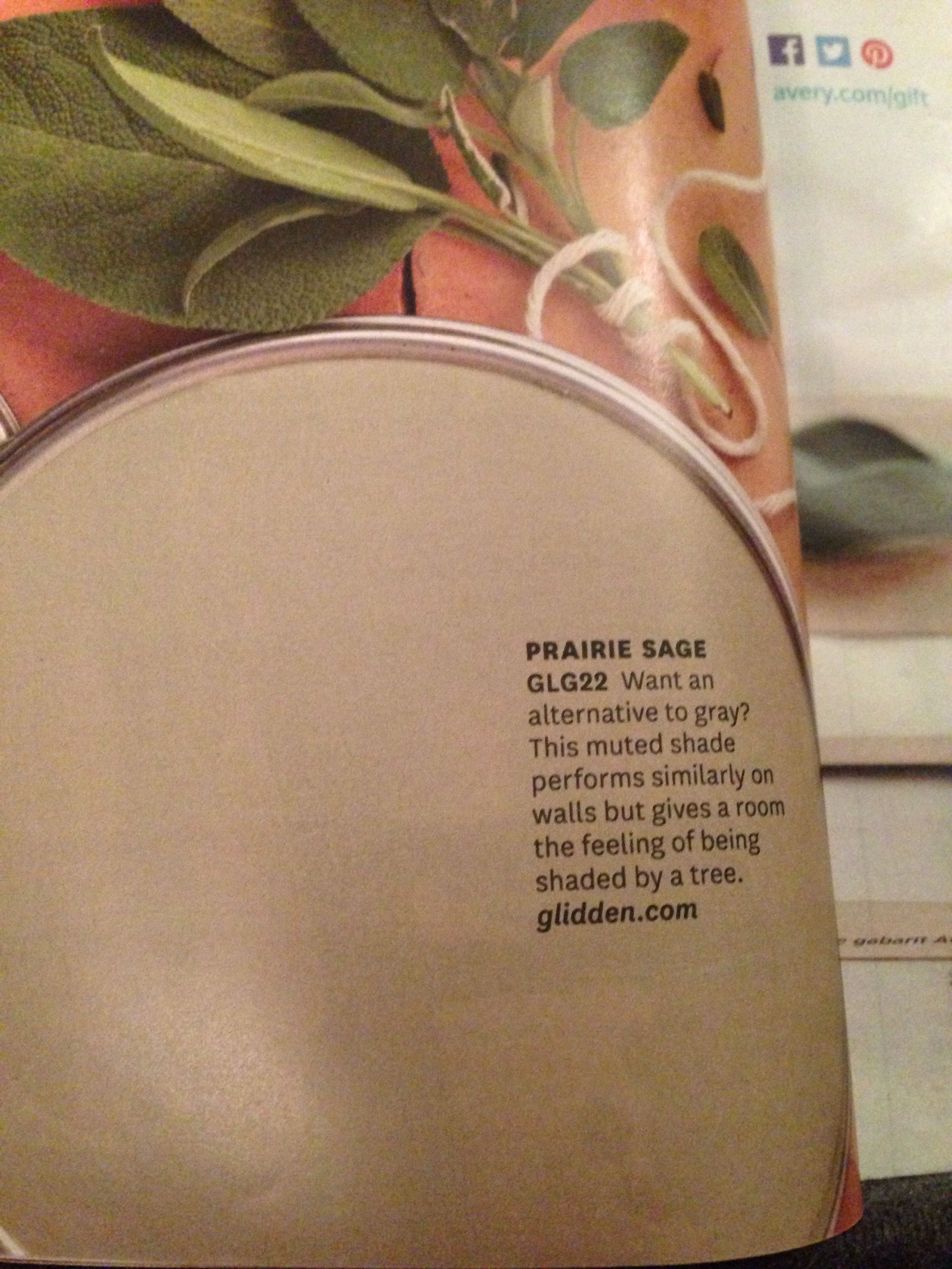 Love this sage green paint color prairie sage by glidden - What color is sage green ...