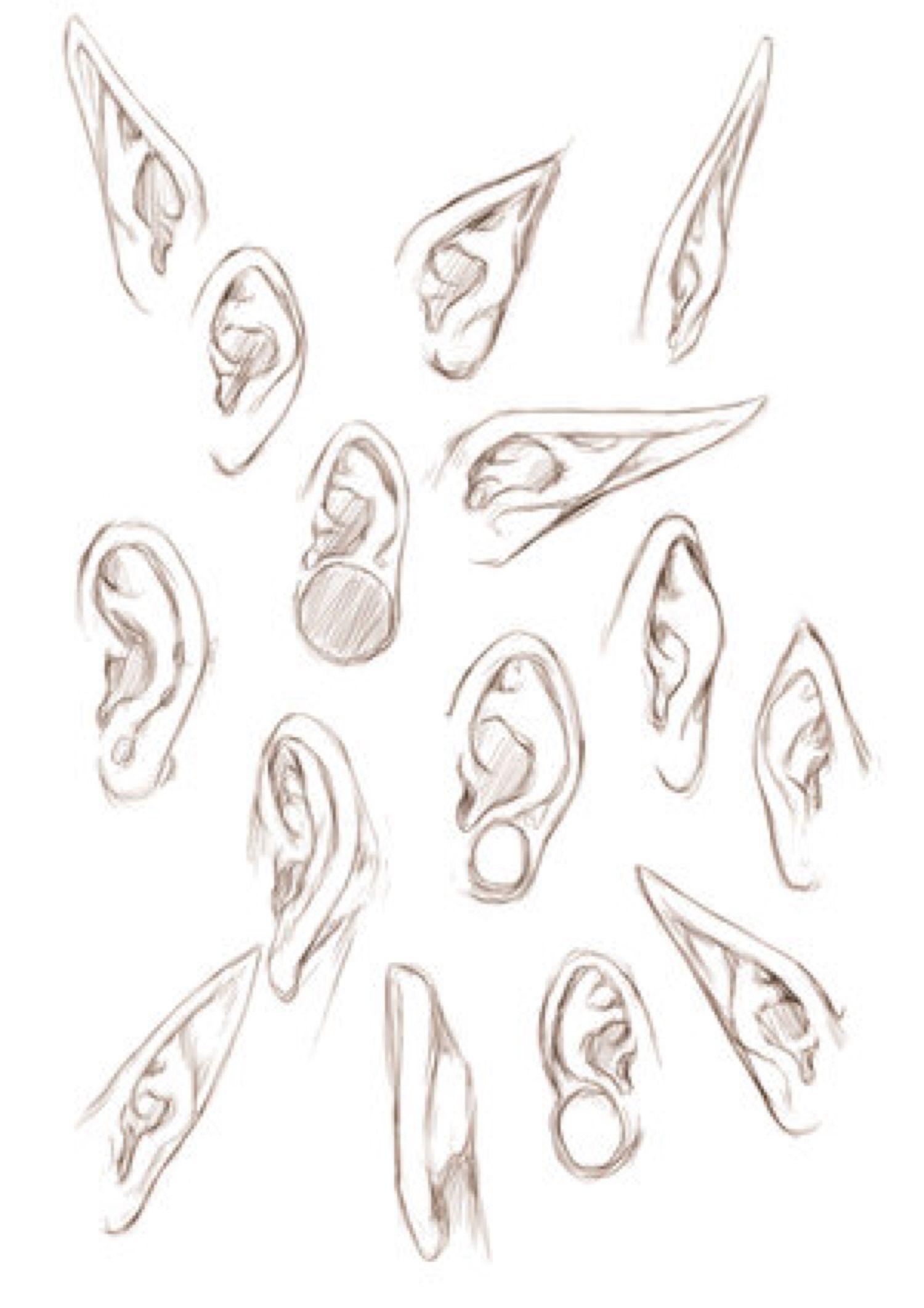 EARS+ by jinx-star on @DeviantArt | стадики | Pinterest | Dibujo ...