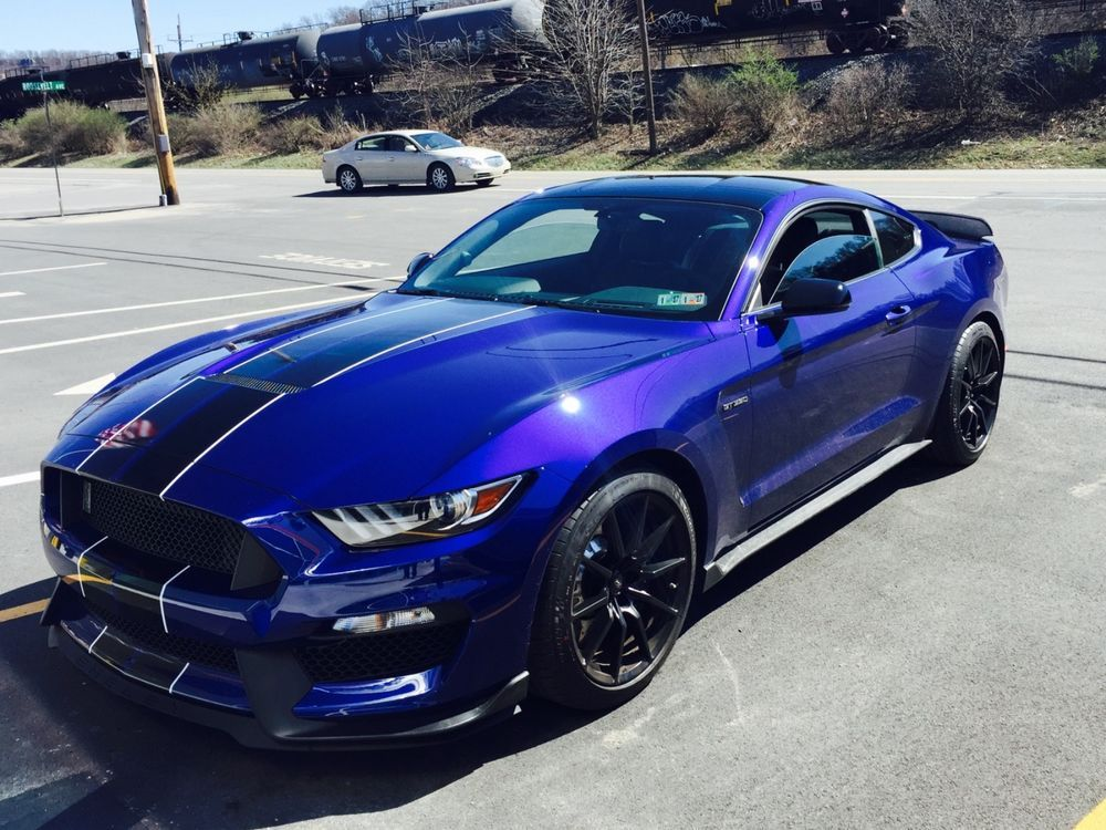 2016 ford mustang shelby gt 350 pinterest mustang ford mustang ebay 2016 ford mustang shelby gt 350 2016 mustang shelby gt350 52l flat plane freerunsca Choice Image