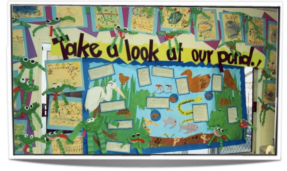 Science Pond Life Bulletin Board Decorating Ideas Science