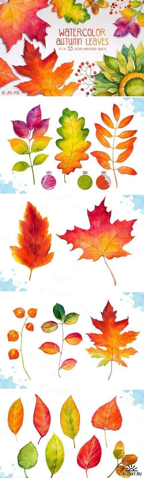 Autumn leaves. Watercolor set. - 795622
