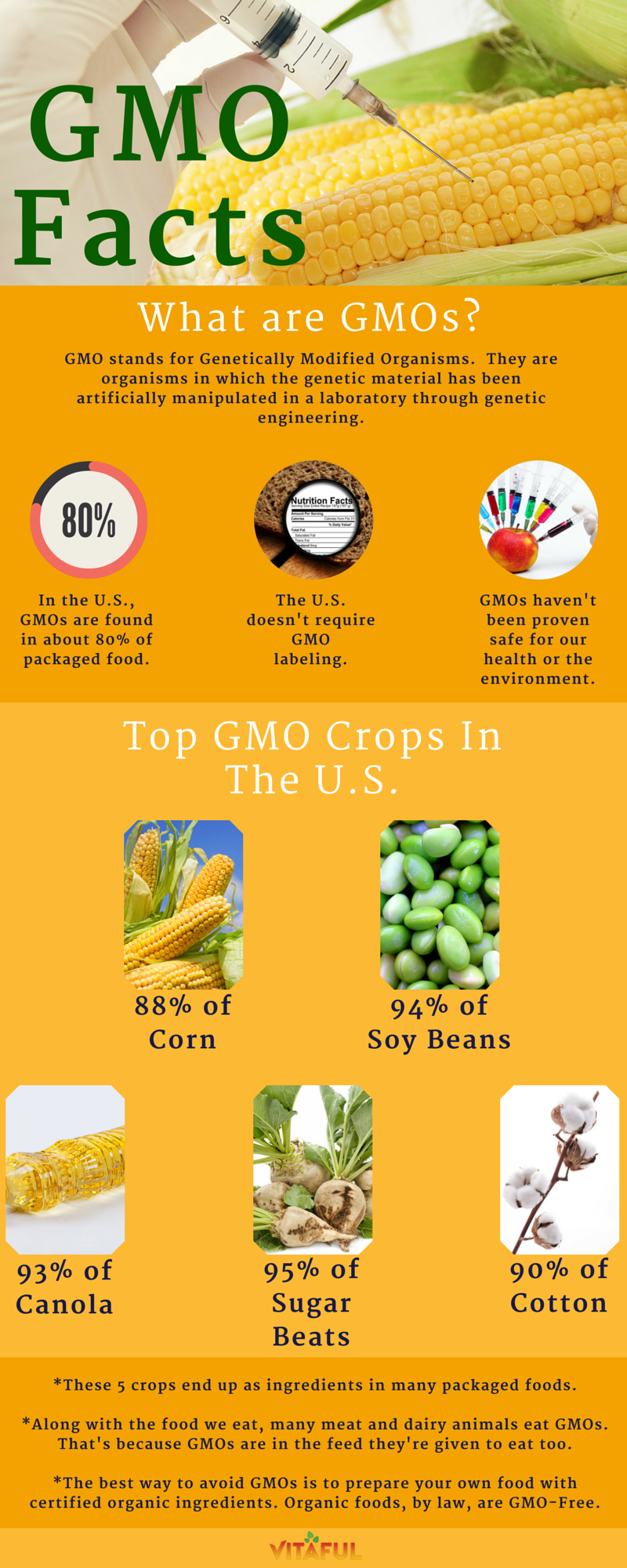 An Overview Of Gmos Includes A List Of Top Gmo Crops In The U S