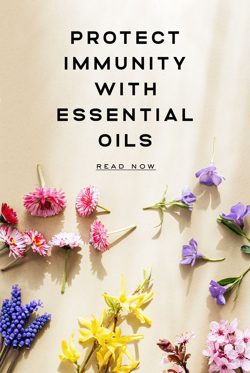 Protect Immunity With Essential Oils In 2020 100 Pure Essential Oils Essential Oils Oils
