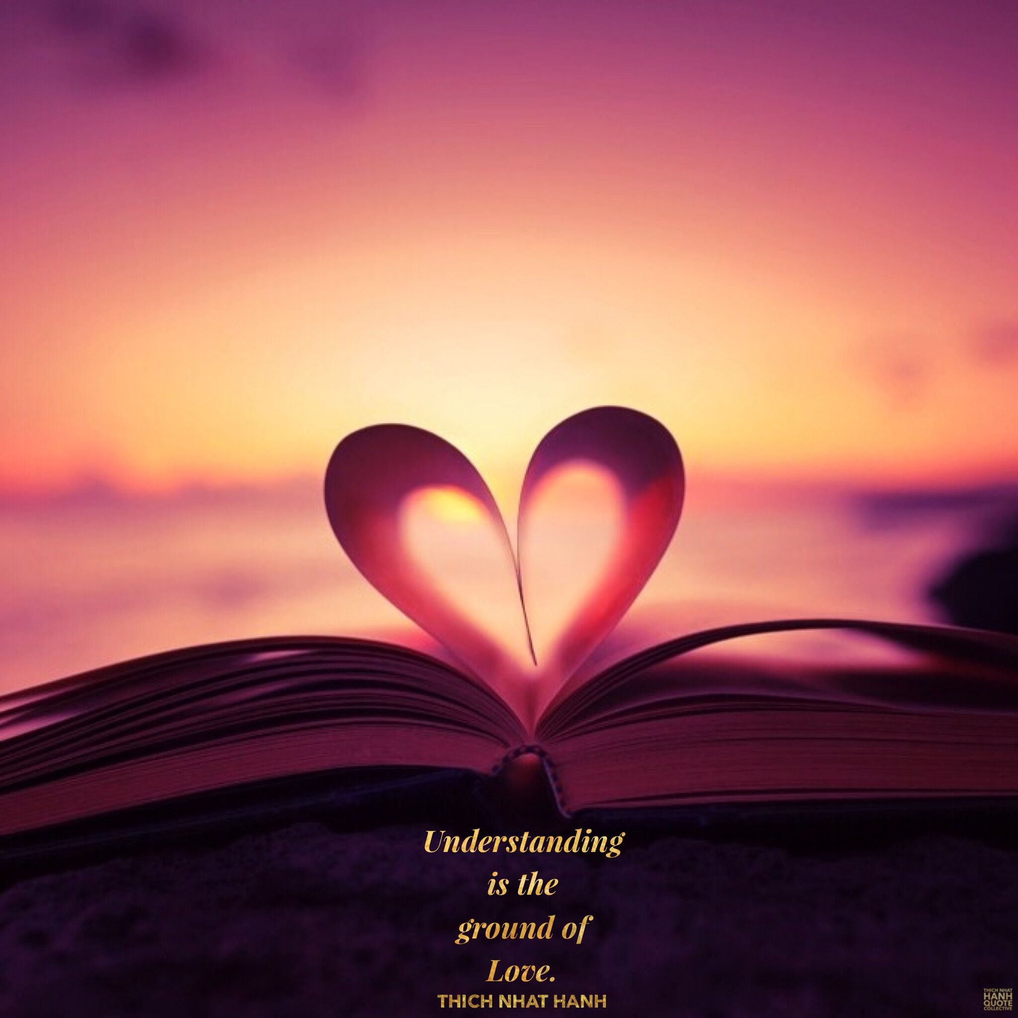 Understanding Is The Ground Of Love Thich Nhat Hanh Thichnhathanhquotecollective Thaysaid Thay B Best Love Quotes Silent Love Love Binding Spell