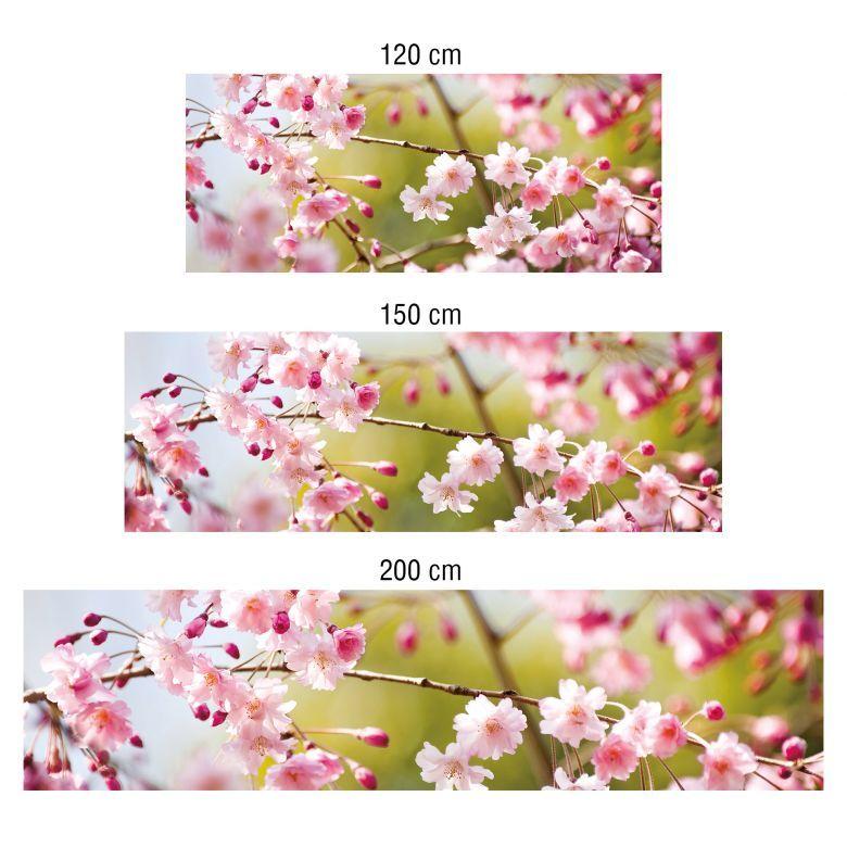 Küchenrückwand - Alu-Dibond- Cherry Blossoms Deko Pinterest