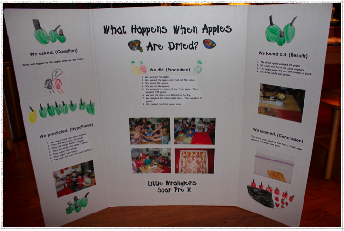 Kindergarten Science Fair Project Ideas