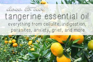 32+ Benefits and Uses of Tangerine Essential Oil | Go Green Blog - Sustainable Baby Steps | Bloglovin'