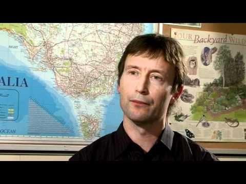 002 Pragmatics Failures on Intercultural Communication