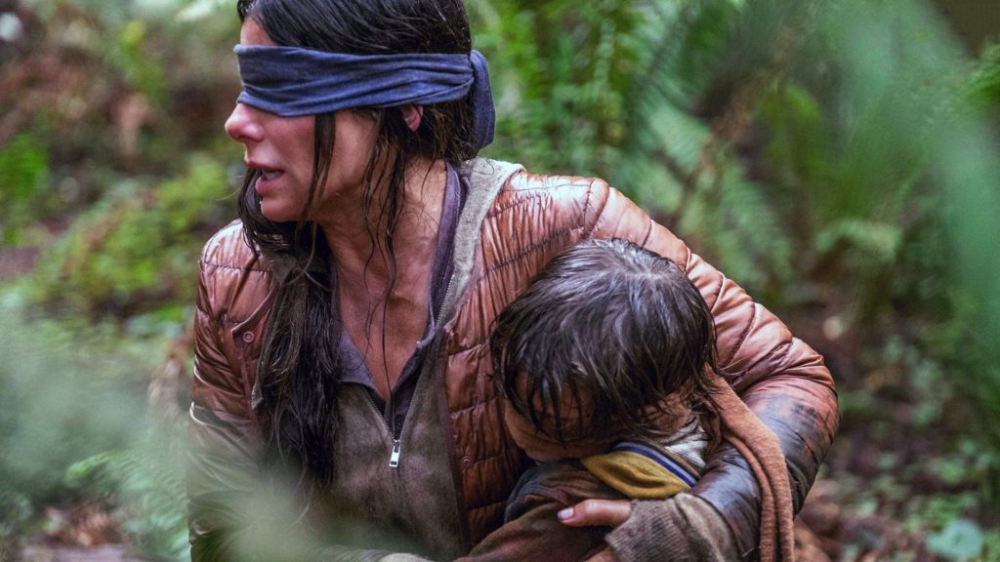 Bird Box (2018) Review in 2020 Movies, Free movies