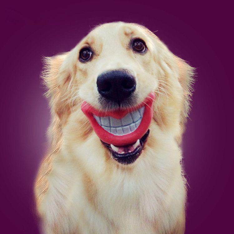 Popular Dog Lips Dog Toy Buy Cheap Dog Lips Dog Toy Lots From