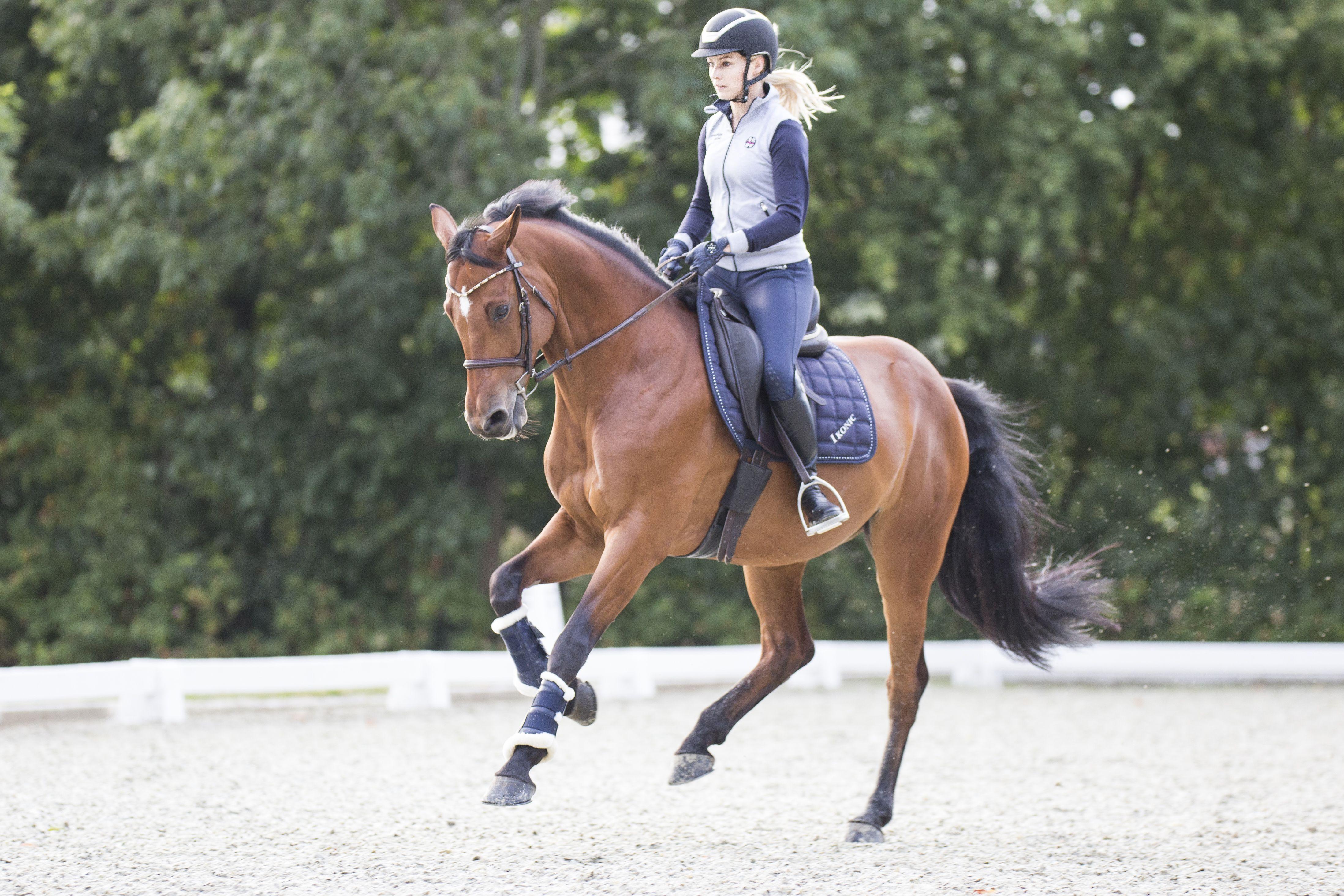 springreiten turnier ausmalbilder pferde  springreiten 04