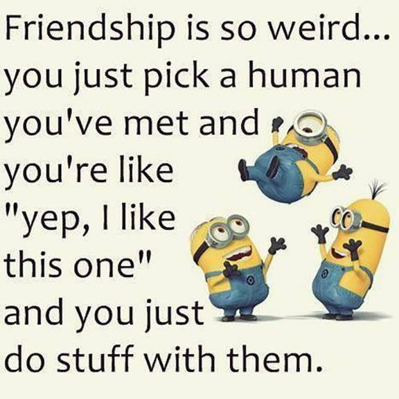 Minions Are Fond Of Friendship And They Love Doing Stupid Things With Their Besties So We Have Some Cool Quotes You Will Them