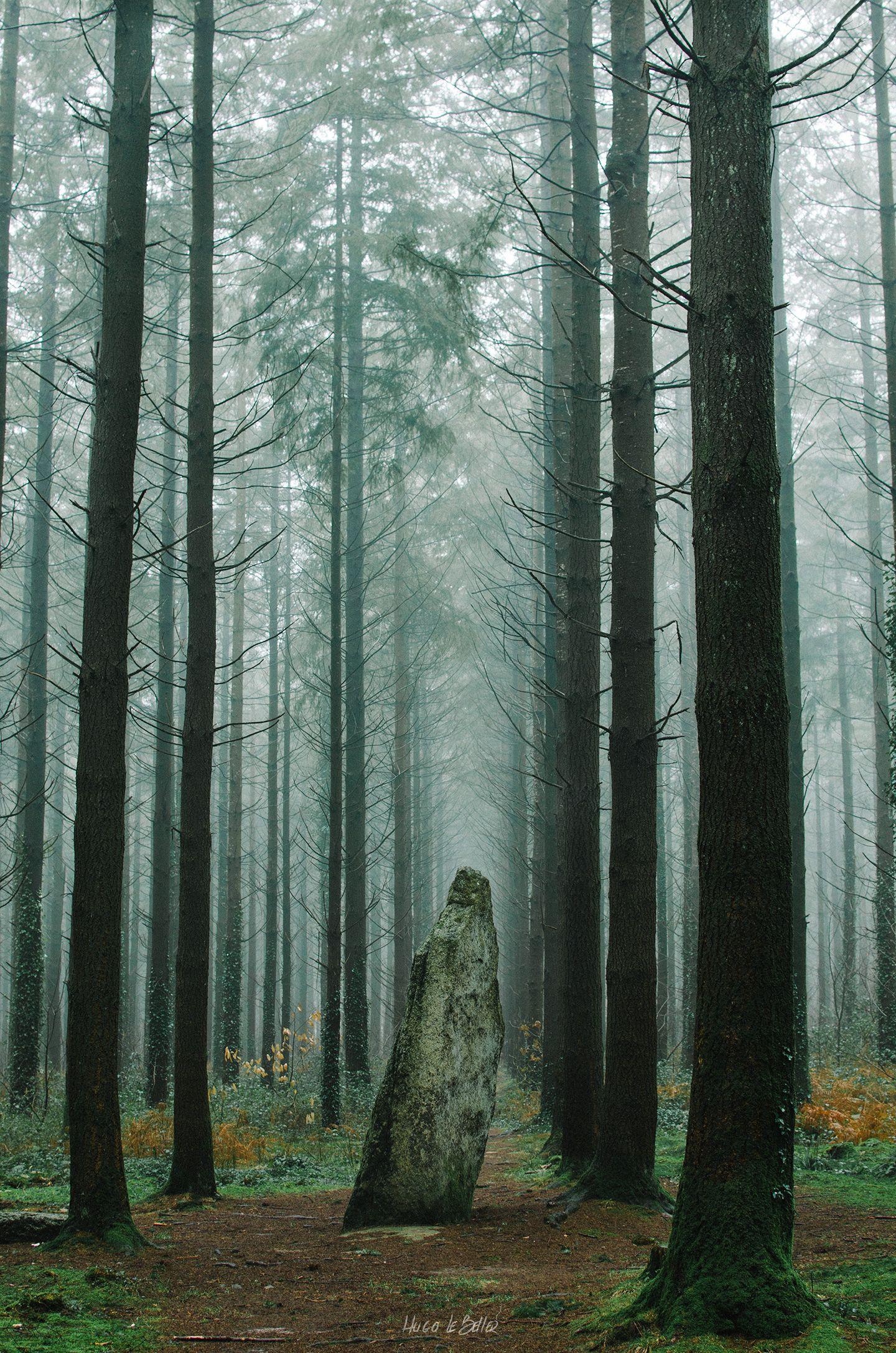 Les 5455 meilleures images du tableau Bretagne sur Pinterest