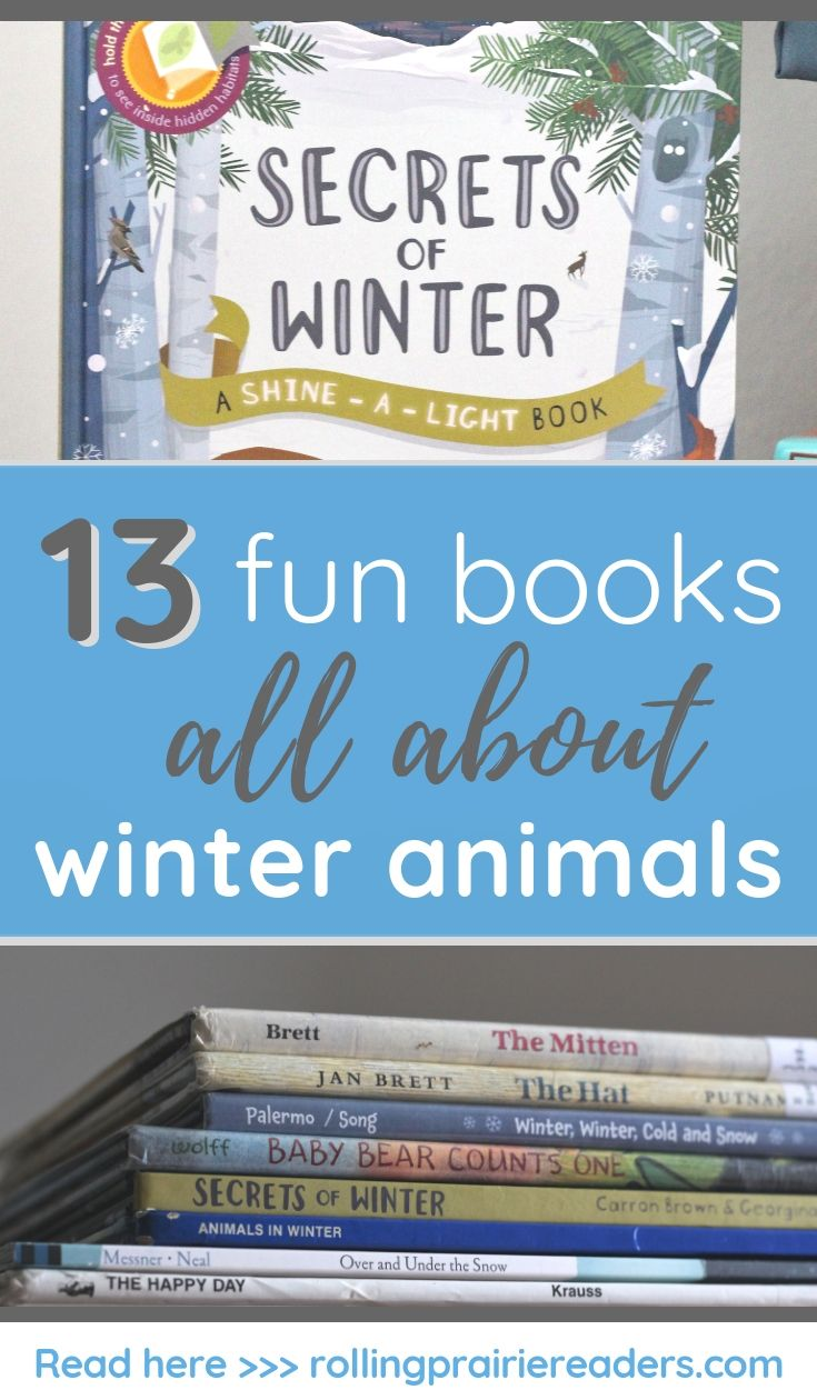 Photo of 13 Fun Winter Animals Books for Kids – Rolling Prairie Readers