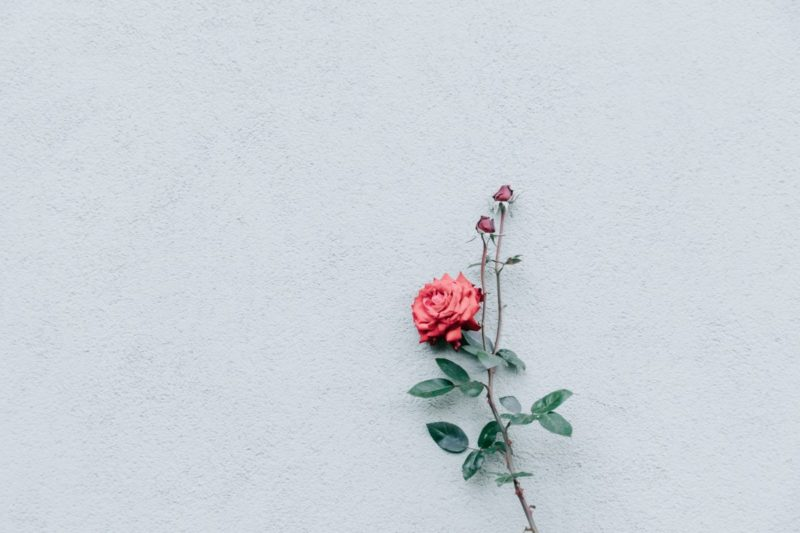 75 Beautiful Minimal Desktop And Laptop Wallpapers For Minimalist Lovers Inspirationfeed Minimalist Desktop Wallpaper Cute Desktop Wallpaper Laptop Wallpaper Desktop Wallpapers