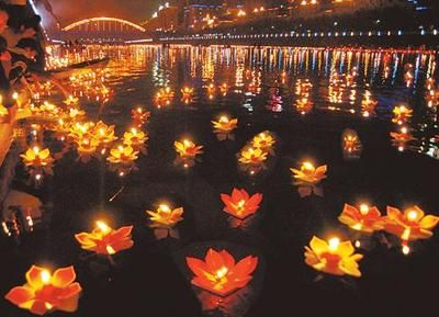 30 Paper Lotus Flower Floating Chinese Lanterns Birthday Wedding