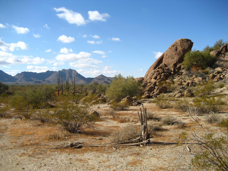 landscape desert - Google Search