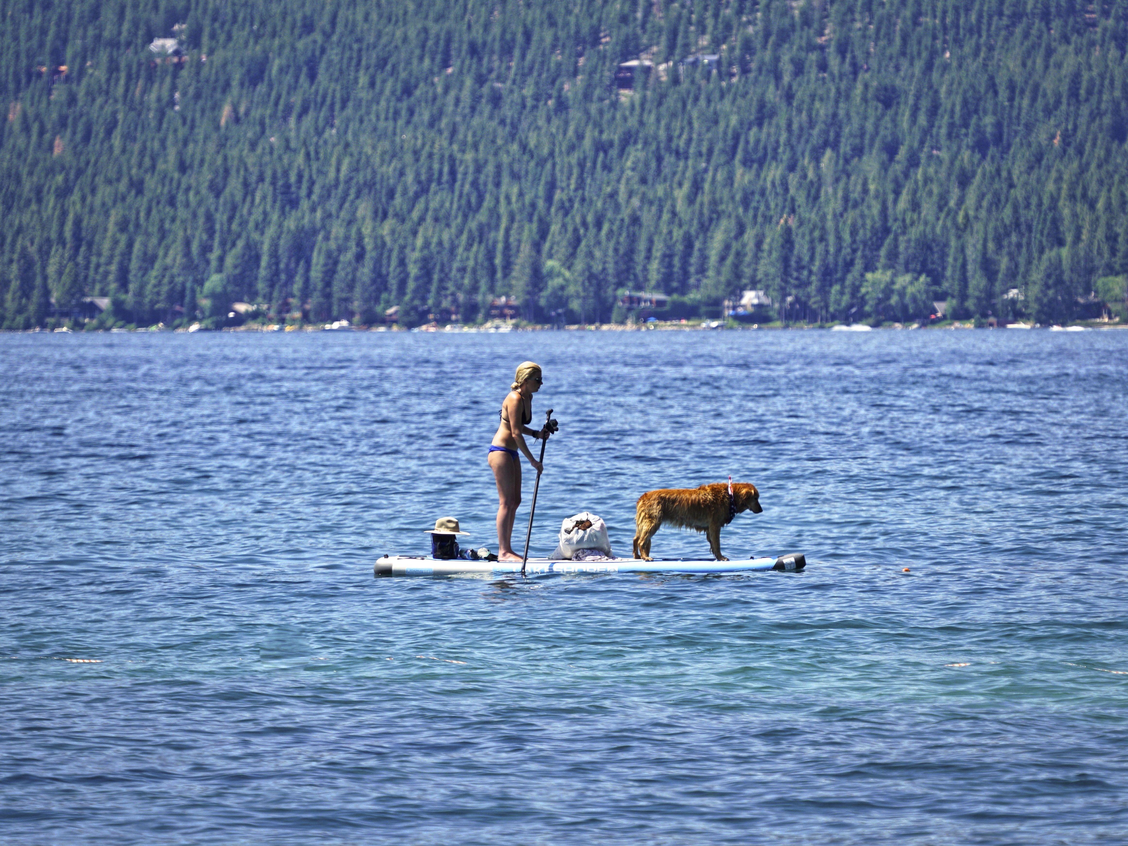 Paddle boarder and dog sand harbor lake tahoe nevada