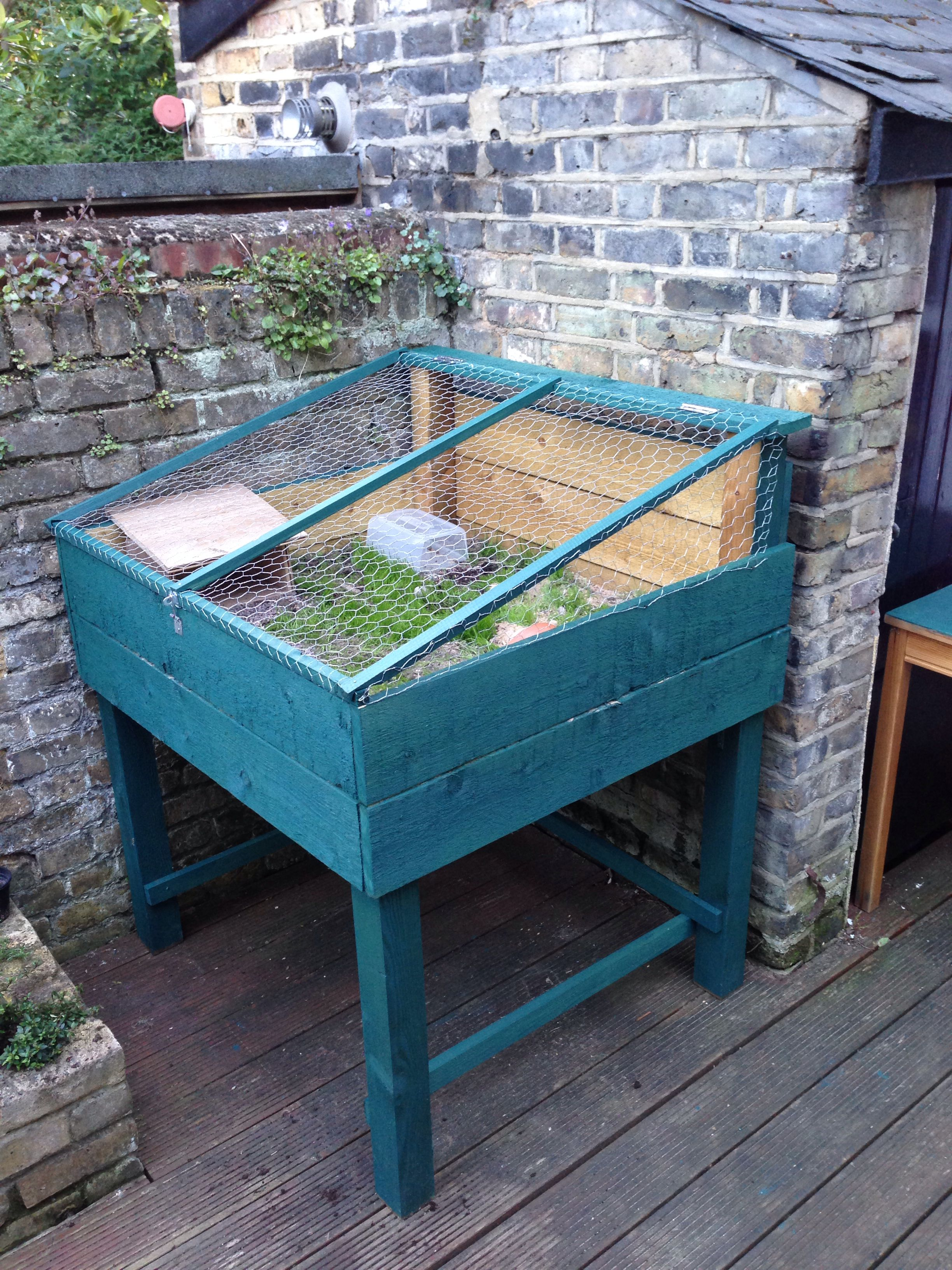 Outdoor tortoise enclosure!...would be great to build something similar for the lizards to go outside in the summer