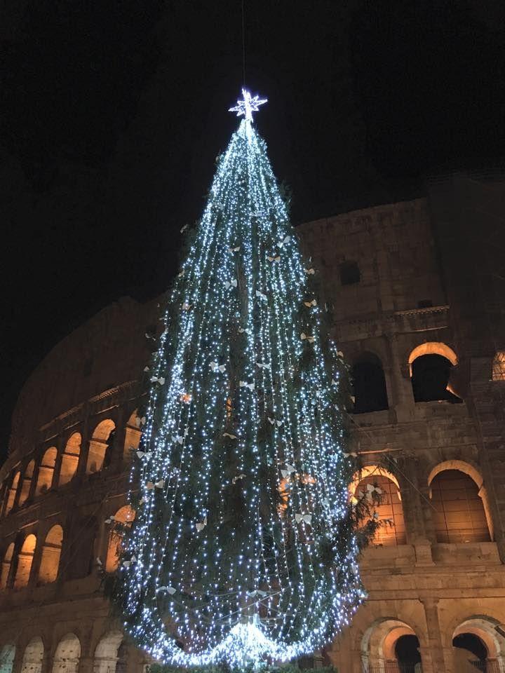 Foto di Stefano Incollà.Colosseo a Natale.