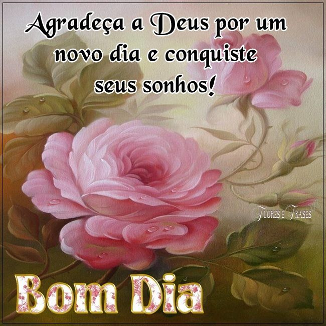 Bom Dia Frases De Bom Dia Bom Dia Com Flores E Deus é Contigo