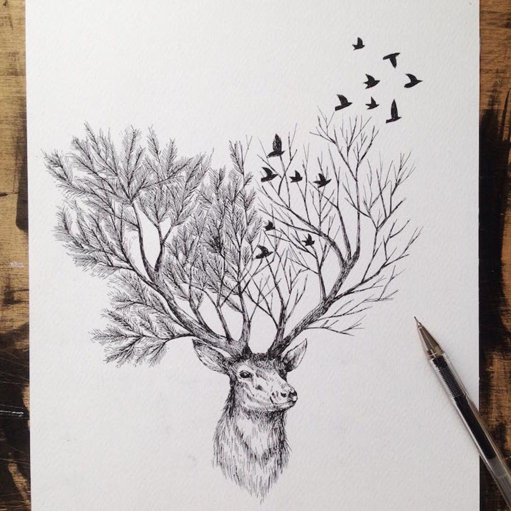 Natural Elements And Animals Fused Together In Intricate Pen Drawings Drawings Sketches Pen Illustration