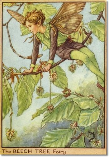 Cicely Mary Barker - Fairies of the Trees - The Beech Tree Fairy Archival Fine Art Paper Print