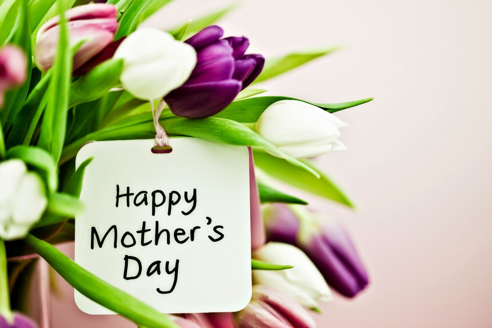 Happy Mothers Day Status For Whatsapp Facebook Dp And Cover Photos Happy Mothers Day Wallpaper Happy Mothers Day Wishes Mother Day Wishes