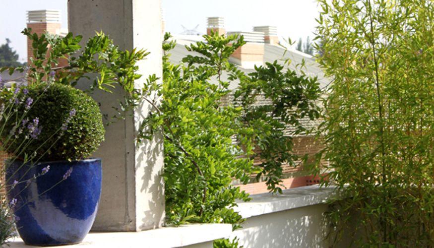 Pque as terrazas con plantas artificiales cerca amb for Jardines con plantas artificiales