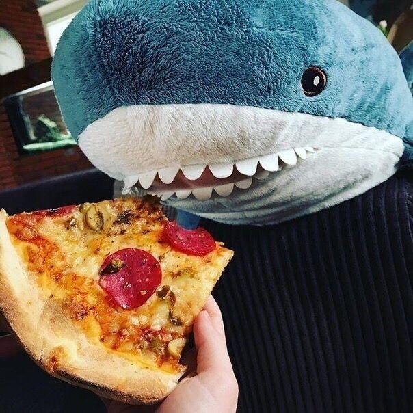 Ikea Shark. БЛОХЭЙ. BLÅHAJ. акула из икеи. IKEA | Мем ...
