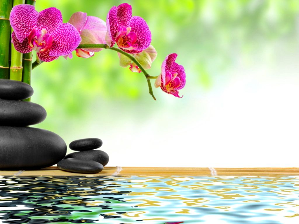 Spa Zen Stones Bamboo Flower Orchid Water Reflection