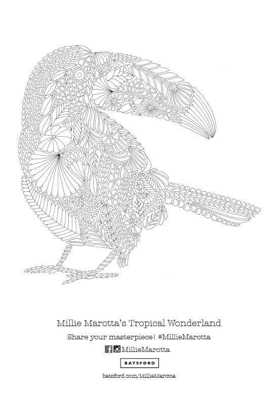 Relax The Mind And Body With Some Colouring In This Beautiful Toucan Pattern Free Download