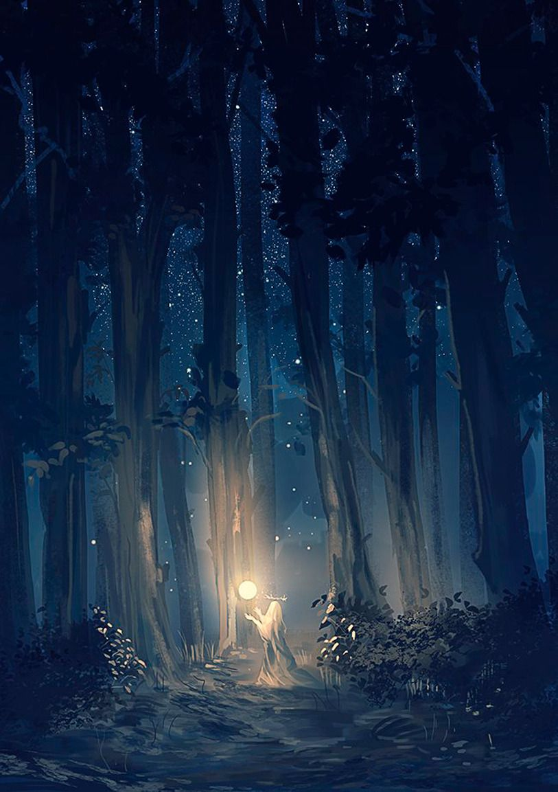 Ночной лес рисунок цукерберг белым