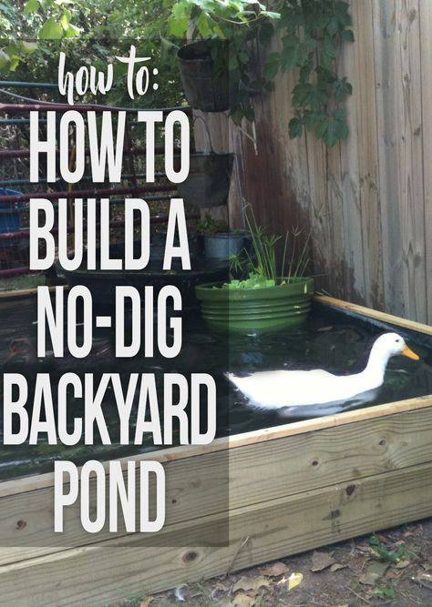 Instructions for building a backyard pond with no kit and ...
