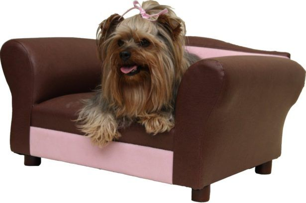 Mini Couches For Teen Bedrooms