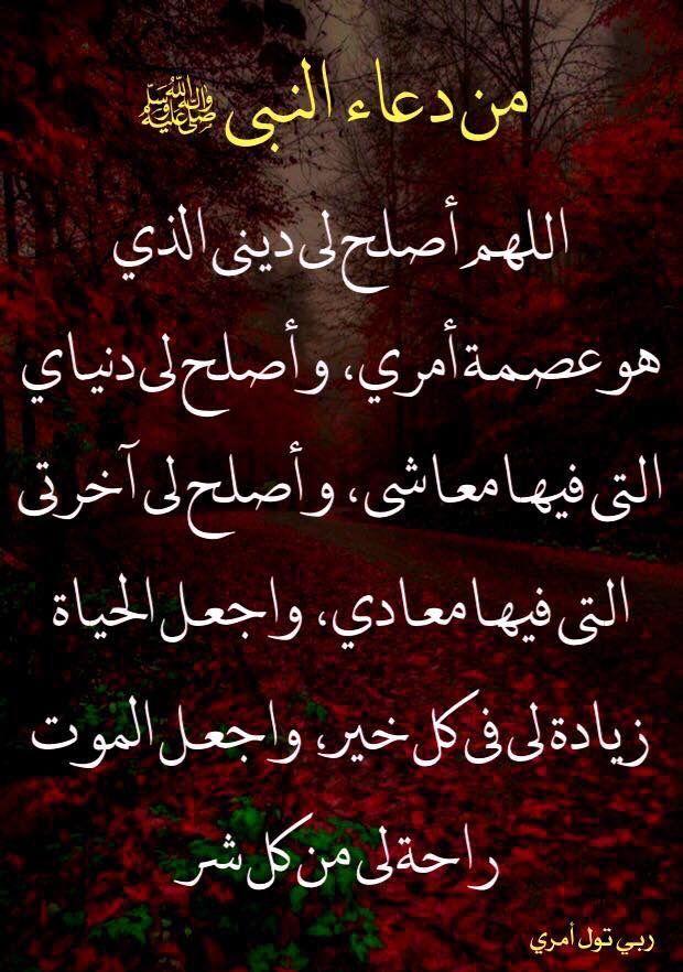 Pin By Bekri Kenza On دعاء Duaa Islam Islamic Quotes Islam