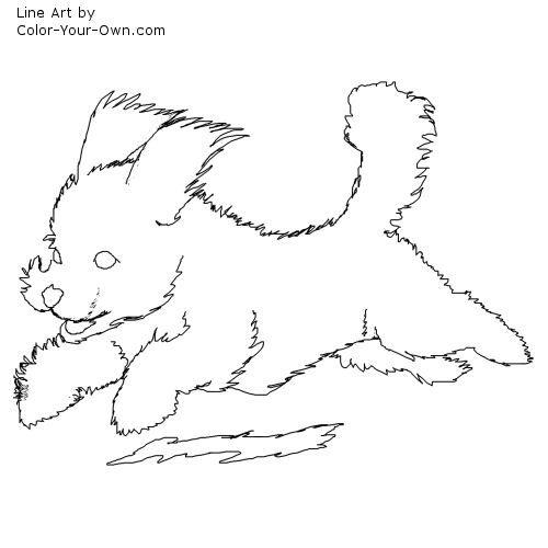 Bichon Frise Puppy Line Art Puppy Coloring Pages Bichon Frise