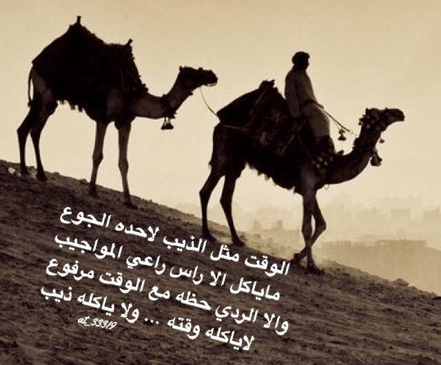 شعر نبطي قصيد ابيات قوافي عشق قافية غزل مدح كلمات خواطر بو ح Arabic Love Quotes Amazing Quotes Quotes