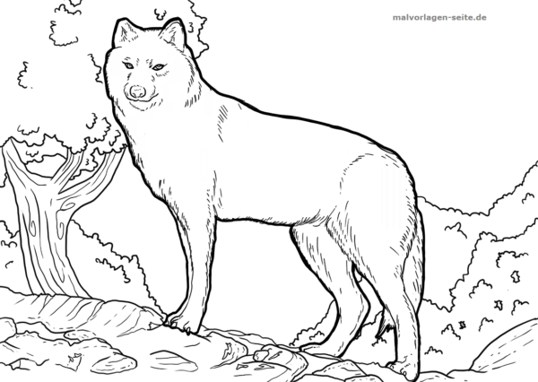 Malvorlage Wolf Tiere - Kostenlose Ausmalbilder