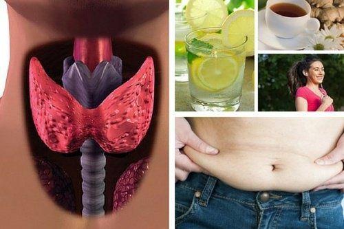 comment perdre du poids avec des problèmes d hypothyroïdie
