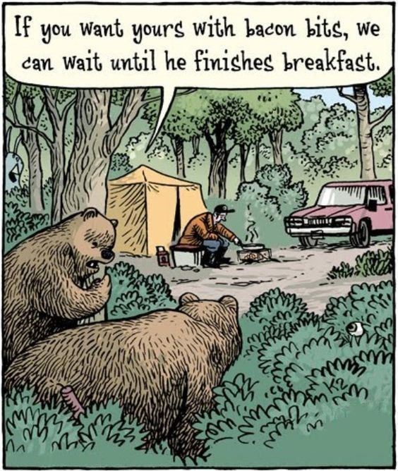14 Times Animals Joined Your Camping Trip (Hilarious