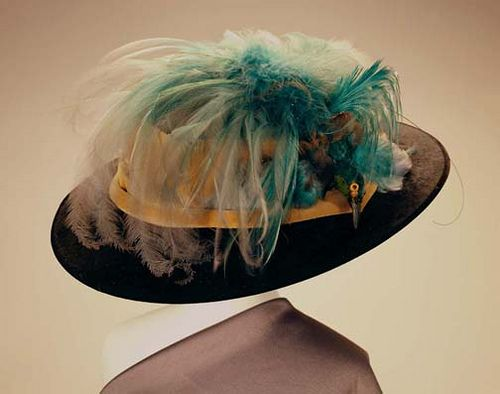 a3ff33b2c2f Large Black Plush Hat with Bird of Paradise, ca. 1900. From the collections  of the Missouri History Museum.