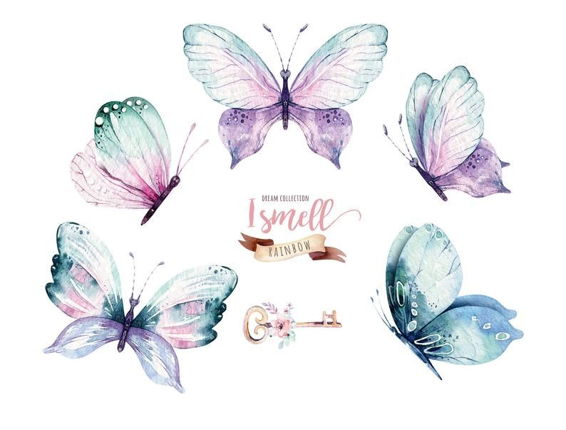 Watercolor Butterfly Clipart Watercolor Butterfly Individual Png Files Hand Painted Vibrant Bohemian Clipart Butterfly Watercolor Butterfly Clip Art Beautiful Butterflies Art