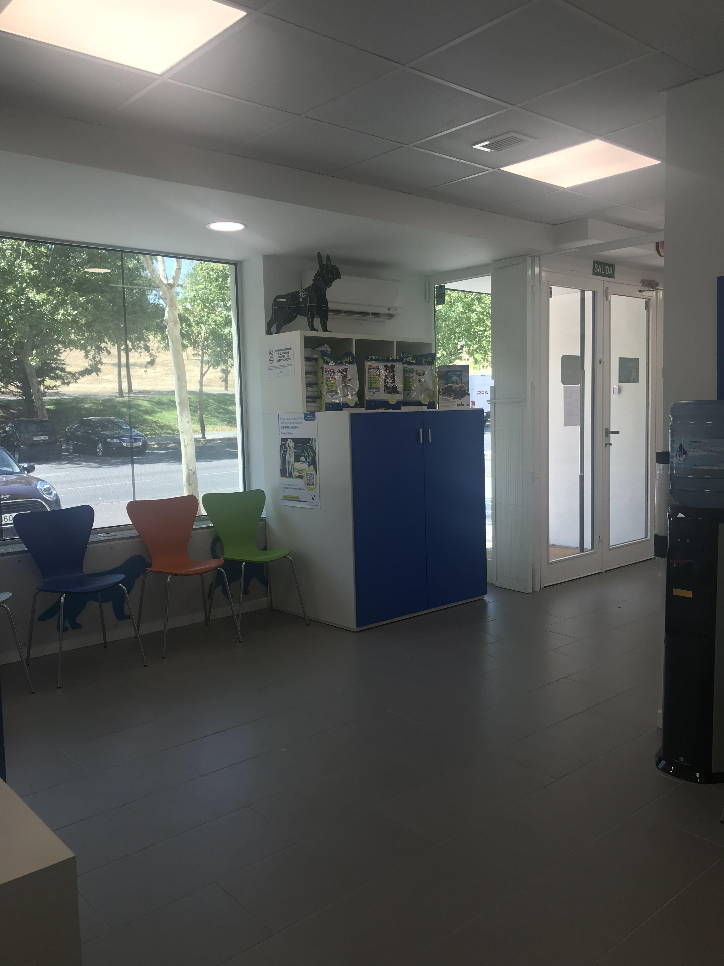 Una de las salas de espera Decoracion veterinaria