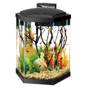 Aqueon 20 Gallon Hex Aquarium Starter Kit Aquariums Petsmart Aquarium Kit Aquarium Betta Fish Tank