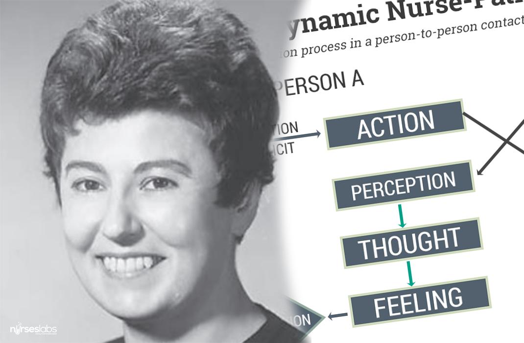 ida jean orlando a nursing process theory notes on nursing theories